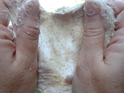Medium gluten development