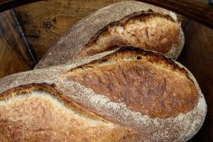 norwich-sourdough-wild-yeast