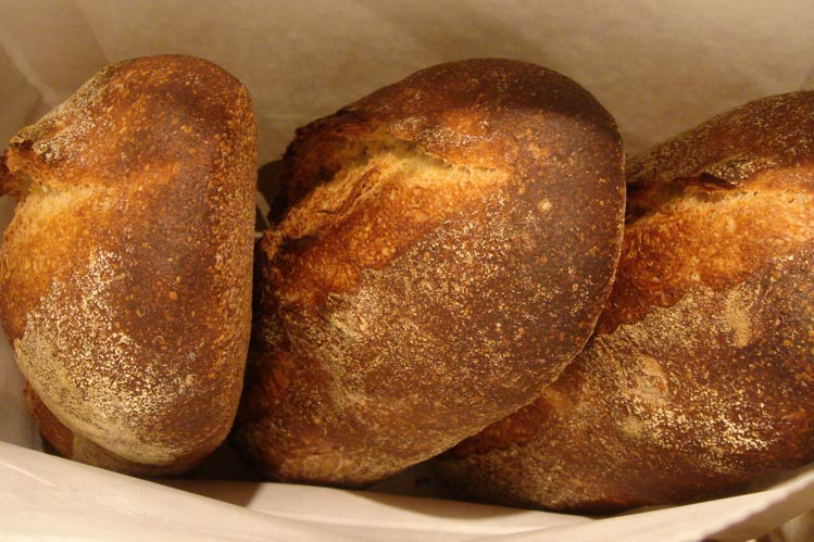 Norwich Sourdough batards