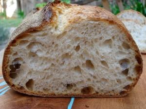 norwich sourdough crumb
