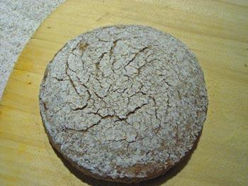 Finnish rye ready to bake, seam-side up