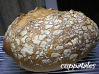 German Sunflower Seed Bread with Dutch Crunch
