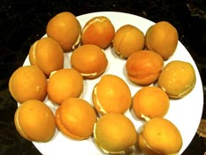 filled-apricots