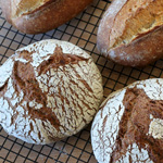 Two Sourdoughs