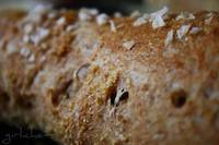 Whole Grain Artisan Bread