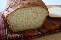 Sweet Ricotta Loaf