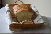 Basic White Bread