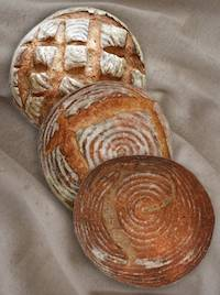 Vermont Sourdough Trilogy for MellowBakers.com
