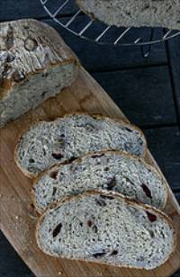 Rustic Pecan and Cranberry country bread