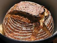 Five-grain levain