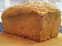 Yeasted Sprouted Wheat Bread