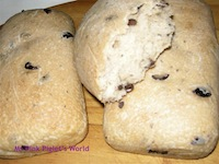 Kalamata Olives and Greek Yoghurt Loaves