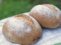 Multi Grain Sandwich Bread