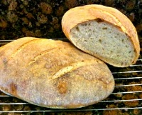 Extra-tangy sourdough bread