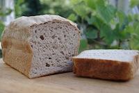 Gluten-free bread #1 Jean Layton's flour blend