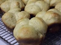 Soft Butter Cloverleaf Rolls
