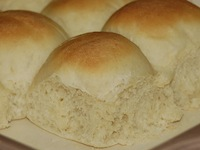 Greek Yogurt Yeast Rolls