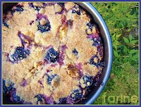 Plum Yogurt Spelt Cake with Butter Crumb Topping