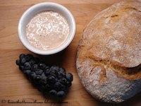 Wild Yeast Sourdough