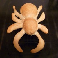 Sourdough Spider