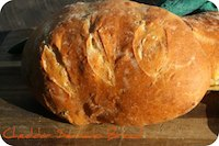 Cheddar Serrano Bread