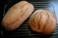 Sourdough peasant loaves