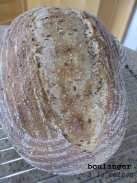 Multigrain whole-wheat sourdough