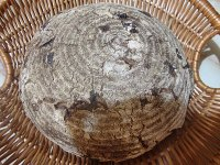 Cranberry Rye Whole Rye Bread with Altus