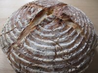 Apricot and Sunflower Sourdough