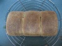 Maple Oat Bread