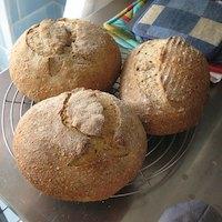 A Seedy Loaf
