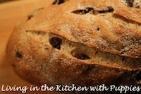 Rosemary And Raisin Bread