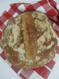 Flavorful Bread Wheat