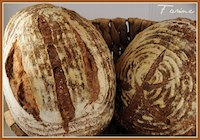 Local Loaf (Hazelnut Cider Barley Bread)