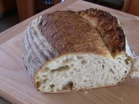 San Francisco Country Sourdough