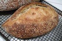 Italian-San Joaquin Sourdough Bread