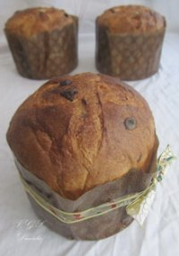 Panettone Con Lievito Naturale