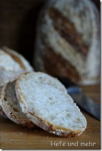 Sourdough bread with roasted oats