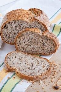 Seeded Multi-Grain Sourdough