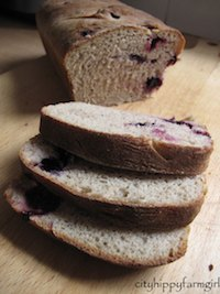 Blueberry Rye Sourdough