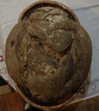 Miche with Prunes