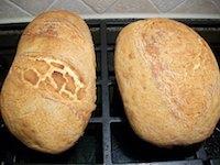 Viena Bread with a Dutch Crumb