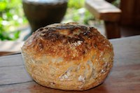 Sunny no knead bread