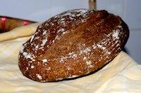 Brown Soft Semolina Sourdough