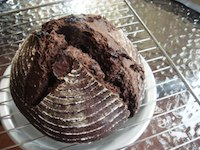 Chocolate Sourdough