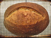 Sourdough Bâtard (SFBI Miche formula)