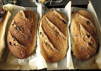 Semolina, sesame, raisin, fennel loaf