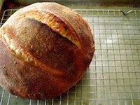 Peter Reinhart Bread