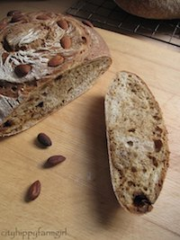 almond fig and rosemary bread
