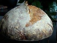 hamelman's Pain au Levain with Whole-Wheat Flour